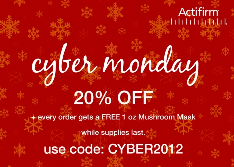 Actifirm Cyber Monday Special